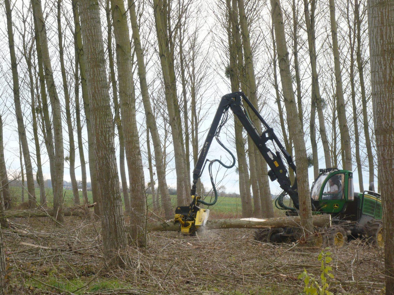 04 - Les rouleaux permettent de déplacer l'arbre