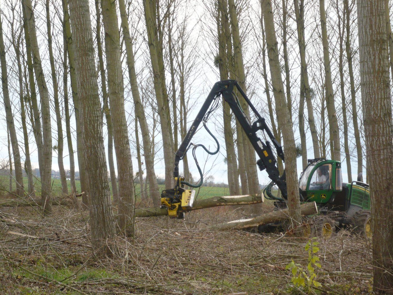 05 - afin de couper les branches quand celles-ci passent au niveau des couteaux
